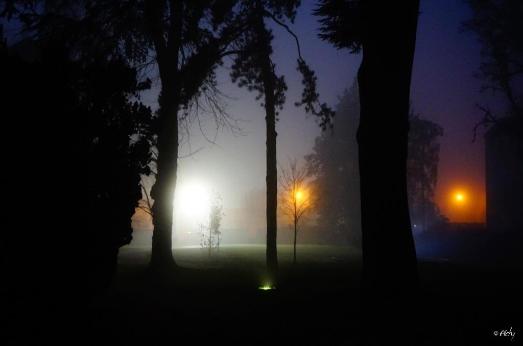 brouillard-c-d-v