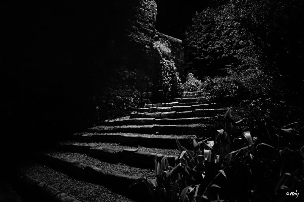 photo escalier Fort St André 1