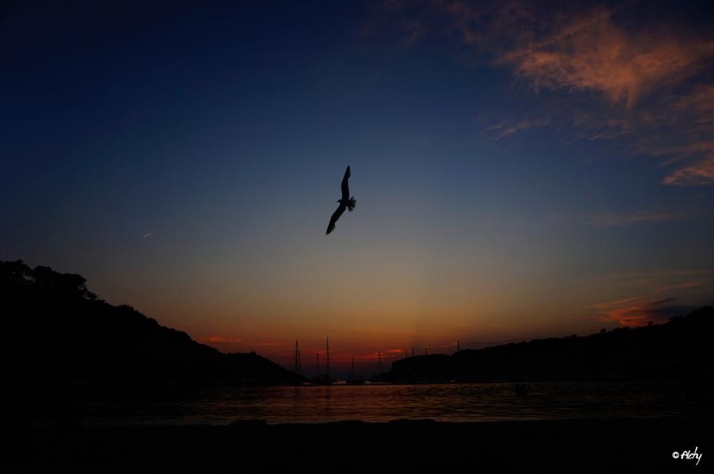 photo Ibiza 2.1
